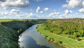 Curso Gratuito AGAR0209 Actividades Auxiliares en Aprovechamientos Forestales (Online) (Dirigida a la Acreditación de las Comptencias Profesionales R.D. 1224/2009)