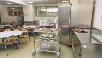 Curso Gratuito Especialista en Alimentación Sana: Niños y Adolescentes + Nutrición Infantil (Doble Titulación + 4 Créditos ECTS)