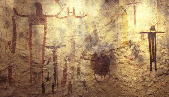 Curso Gratuito Especialista en Antropología Forense y Arqueología