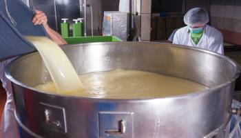 Curso Gratuito Curso en Auditoría Norma Internacional Food Standard (IFS)