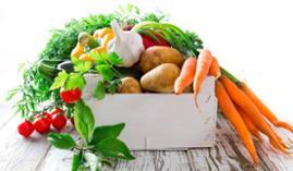 Curso gratuito Experto en Dietética y Nutrición en la Tercera Edad
