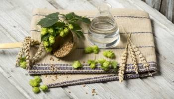 Curso Gratuito Especialista en Aromaterapia (A Distancia)