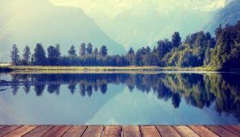 Curso gratuito Curso Online de Auditor de Sistemas de Gestión Ambiental: ISO 14001