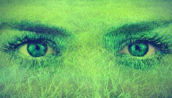 Curso Gratuito Auditor en Sistemas de Gestión Medioambiental UNE-EN-ISO-14001:2015 (Online)