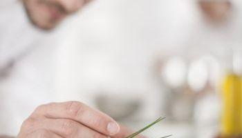 Curso Gratuito Curso en elaboración y Conservación de Alimentos