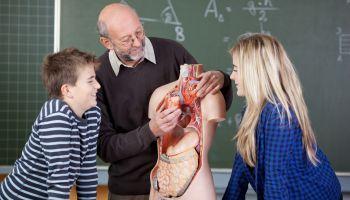 Curso Gratuito Postgrado en Tutoría y Orientación en la Etapa de Educación Secundaria + Titulación Universitaria
