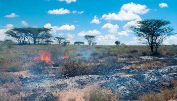 Curso Gratuito Curso Extinción de Incendios (Titulación Universitaria con 4 Créditos ECTS) (Curso Homologado para Bomberos, Bomberos Forestales y Técnicos en Protección Civil)