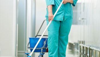 Curso Gratuito Curso Online de Empleo Doméstico y Tareas de Limpieza