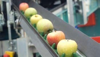 Curso Gratuito Curso Online de Prevención de Riesgos Laborales en Supermercados