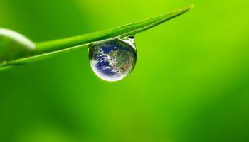Curso Gratuito Curso Superior de Cálculo del Análisis del Ciclo de Vida, Huella de Carbono, Hídrica y Ecoetiquetado