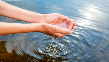 Curso Gratuito Postgrado en Educación Ambiental: Programas, Actividades y Recursos + Titulación Universitaria