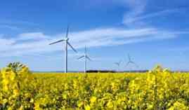 Curso Gratuito Máster en Gestión del Montaje y Mantenimiento de Parques Eólicos + Titulación Universitaria en Aprovisionamiento y Montaje de Instalaciones de Energía Eólica