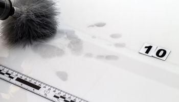 Curso Gratuito Master Online en Criminología y Criminalística + Titulación Universitaria