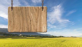 Curso Gratuito Máster en Derecho Ambiental y de la Sostenibilidad + DOBLE Titulación Universitaria + 8 ECTS