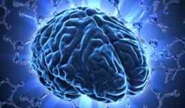 Curso Gratuito Máster en Neurociencia y Dolor