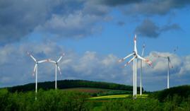 Curso Gratuito Máster en Sostenibilidad Ambiental