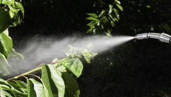 Curso Gratuito Master en Técnicas de Control Fitosanitario y Preparación del Terreno en Cultivos Herbáceos + Titulación Universitaria
