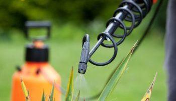 Curso Gratuito Master en Gestión y Producción Agropecuaria + Titulación Universitaria en Seguridad Alimentaria