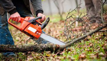 Curso gratuito Control y Extinción de Incendios (Online)