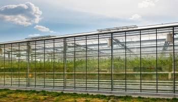Curso gratuito Operaciones Auxiliares de Riego, Abonado y Aplicación de Tratamientos en Cultivos Agrícolas