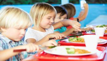 Curso Gratuito Experto en Nutrición Infantil + Técnico Auxiliar de Jardín de Infancia (Doble Titulación + 20 Créditos tradicionales LRU)