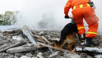 Curso Gratuito SEAD0311 Gestión y Coordinación en Protección Civil y Emergencias (Dirigida a la Acreditación de las Competencias Profesionales R.D. 1224/2009)