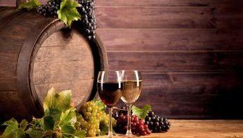 Curso Gratuito UF0909 Procesos de Elaboración de Productos Derivados de la Uva y del Vino