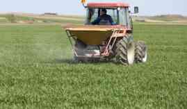 Curso Gratuito UF0967 Recolección de Frutos, Semillas, Plantas y Otros Productos Comercializables