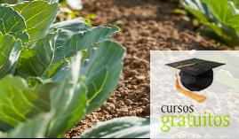 Cursos gratuitos Agricultura Ecológica Agau0108