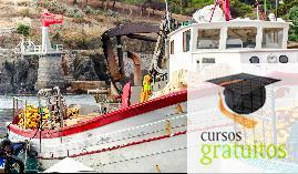 Cursos Para Trabajadores Certificado Formación Básica Profesional Marítimo En Buque Civil (fom/2296/2002) (sector: Pesca Y Acuicultura) Mapn042po