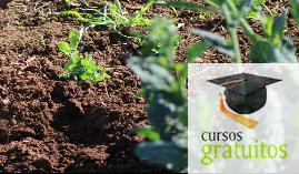 Cursos gratuitos Fruticultura Agaf0108