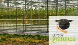 Cursos gratuitos Almeria Actividades Auxiliares En Viveros, Jardines Y Centros De Jardinería Aga00108